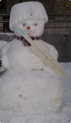 Вот такие фигуры из снега и льда делают умельцы-мастера в нашем городе Полюбуйтесь и вы. 1.Тигр - символ 2010 года. фото 8