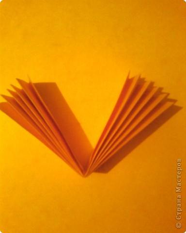 Берём лист двусторонней цветной бумаги, разрезаем пополам и из одной половинки делаем гармошку. Ширина полоски гармошки 1.5 - 2 см. фото 2