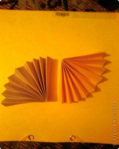 Берём лист двусторонней цветной бумаги, разрезаем пополам и из одной половинки делаем гармошку. Ширина полоски гармошки 1.5 - 2 см. фото 3
