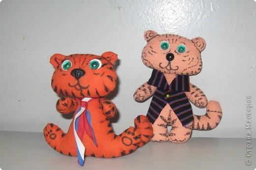 Забавные Тигрята Лиды ( 5 кл.)  фото 1