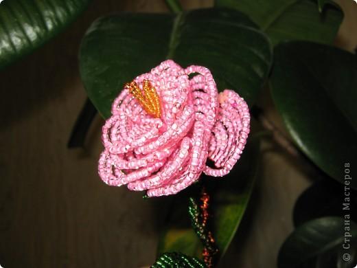 Мой первый опыт в плетении цветов. фото 1