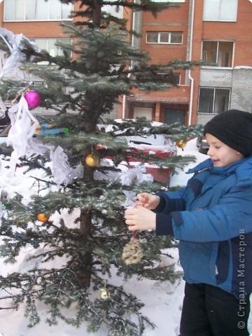 В начале узнаем, чем питаются птицы зимой и как им трудно найти корм. У нас в Сибири сейчас морозы за 30 градусов. Решаем: будем подкармливать птиц. Взяли белые сухари (черные нельзя). Познакомились со ступкой и пестиком. фото 13