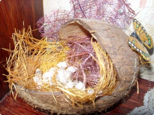 Поделки из кокоса своими руками фото