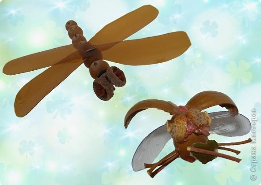 Стрекоза и жук неизвестной породы. фото 1