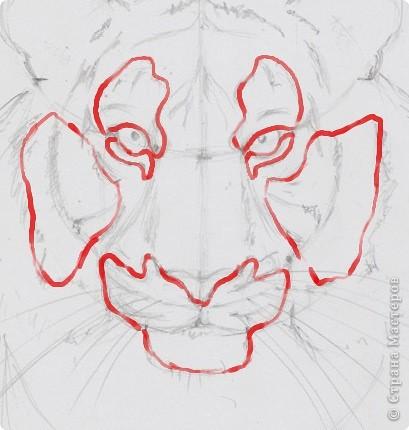 Готовый рисунок карандашом. фото 13