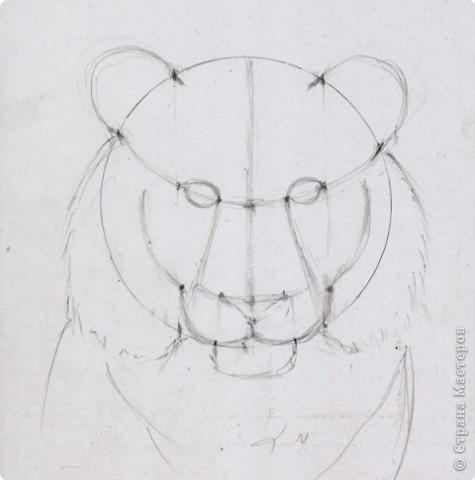 Готовый рисунок карандашом. фото 8