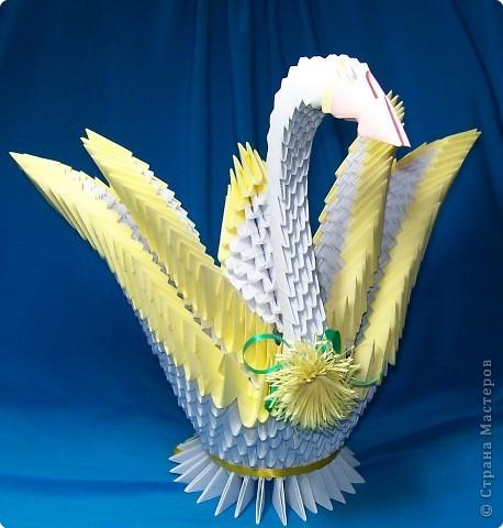 Солнечный лебедь. Модульное оригами.