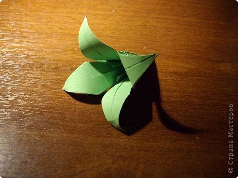 Кусудама Мастер-класс День рождения Оригами кусудама Розочка+МК Бумага фото 18