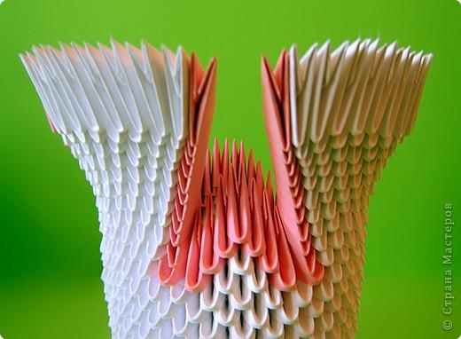 Мастер-класс Оригами китайское модульное Мастер-класс двойного лебедя Бумага фото 17