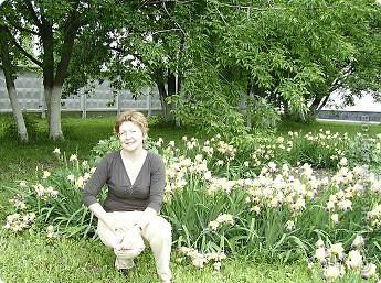 Клумбочное разноцветье фото 12