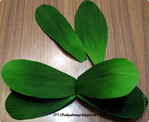 """У меня дома растут орхидеи. Правда, вот уже год они не цветут. Теперь у меня расцвела орхидея из моих любимых полосок!!!  Я получила огромное удовольствие от процесса работы и огромное удовлетворение от полученного результата!!!  Хочу Вам рассказать, как можно """"вырастить"""" у себя дома такой замечательный цветок... фото 5"""