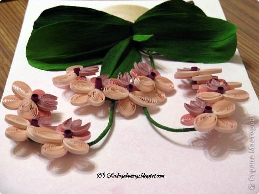 """У меня дома растут орхидеи. Правда, вот уже год они не цветут. Теперь у меня расцвела орхидея из моих любимых полосок!!!  Я получила огромное удовольствие от процесса работы и огромное удовлетворение от полученного результата!!!  Хочу Вам рассказать, как можно """"вырастить"""" у себя дома такой замечательный цветок... фото 11"""