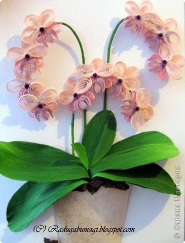 """У меня дома растут орхидеи. Правда, вот уже год они не цветут. Теперь у меня расцвела орхидея из моих любимых полосок!!!  Я получила огромное удовольствие от процесса работы и огромное удовлетворение от полученного результата!!!  Хочу Вам рассказать, как можно """"вырастить"""" у себя дома такой замечательный цветок... фото 13"""