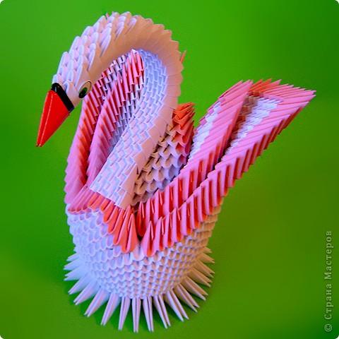 Мастер-класс Оригами китайское модульное Мастер-класс двойного лебедя Бумага фото 37