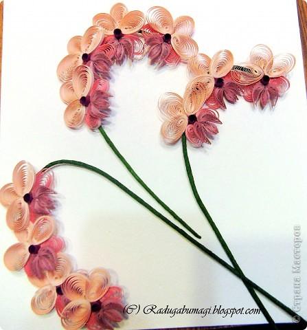"""У меня дома растут орхидеи. Правда, вот уже год они не цветут. Теперь у меня расцвела орхидея из моих любимых полосок!!!  Я получила огромное удовольствие от процесса работы и огромное удовлетворение от полученного результата!!!  Хочу Вам рассказать, как можно """"вырастить"""" у себя дома такой замечательный цветок... фото 8"""