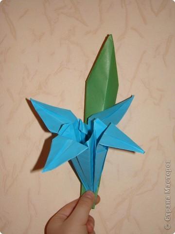 Вот такой цветок сделала сегодня дочка на занятиях...Педагог Иванова В.Н. фото 1