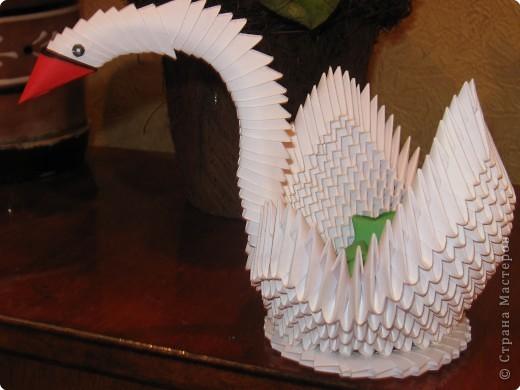 Лебедь из модулей | Страна