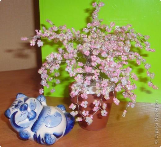 плела цветущую сакуру, на мой взгляд получилась цветущая вишня.