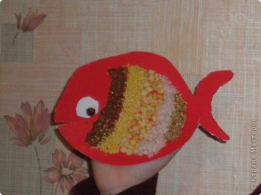 Мой сын сделал рыбку из картона, сверху на ПВА полосами приклеена гречка, пшено, горох, рис, птичий корм. Глазик - несквик.