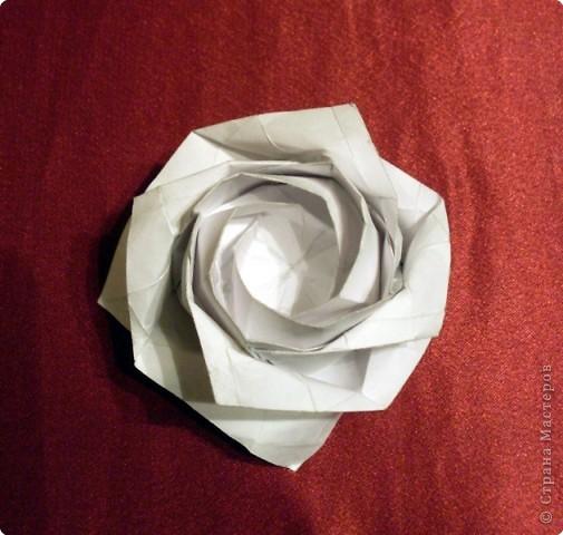 Поделка изделие Оригами Новая