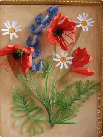 Это маки полевые именно в таком соседстве они произрастают в степном Крыму.  фото 2