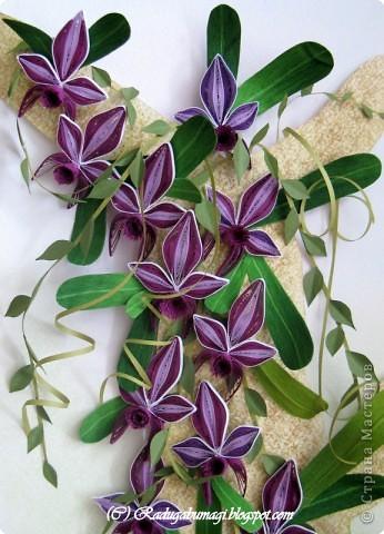 """Мне очень нравятся орхидеи, но, к сожалению, далеко не все виды орхидей могут расти в нашем климате. Я решила сделать себе ещё один подарок, """"вырастив"""" бумажную орхидею.   Небольшая справка: Орхидеи могут расти как в грунте (на земле), так и на деревьях и иногда на скалах. Область распространения орхидей достаточно обширна, но больше всего их встречается именно в жарком, влажном климате, т.е. в тропиках. Дикие тропические орхидеи в основном растут на деревьях (на нижних ветках и стыках веток со стволом дерева).  фото 18"""