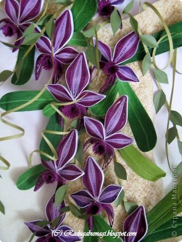 """Мне очень нравятся орхидеи, но, к сожалению, далеко не все виды орхидей могут расти в нашем климате. Я решила сделать себе ещё один подарок, """"вырастив"""" бумажную орхидею.   Небольшая справка: Орхидеи могут расти как в грунте (на земле), так и на деревьях и иногда на скалах. Область распространения орхидей достаточно обширна, но больше всего их встречается именно в жарком, влажном климате, т.е. в тропиках. Дикие тропические орхидеи в основном растут на деревьях (на нижних ветках и стыках веток со стволом дерева).  фото 2"""