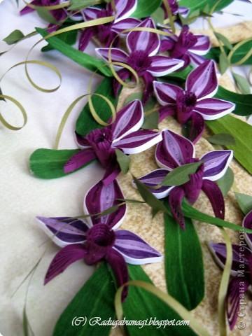 """Мне очень нравятся орхидеи, но, к сожалению, далеко не все виды орхидей могут расти в нашем климате. Я решила сделать себе ещё один подарок, """"вырастив"""" бумажную орхидею.   Небольшая справка: Орхидеи могут расти как в грунте (на земле), так и на деревьях и иногда на скалах. Область распространения орхидей достаточно обширна, но больше всего их встречается именно в жарком, влажном климате, т.е. в тропиках. Дикие тропические орхидеи в основном растут на деревьях (на нижних ветках и стыках веток со стволом дерева).  фото 16"""