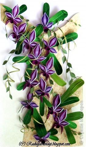 """Мне очень нравятся орхидеи, но, к сожалению, далеко не все виды орхидей могут расти в нашем климате. Я решила сделать себе ещё один подарок, """"вырастив"""" бумажную орхидею.   Небольшая справка: Орхидеи могут расти как в грунте (на земле), так и на деревьях и иногда на скалах. Область распространения орхидей достаточно обширна, но больше всего их встречается именно в жарком, влажном климате, т.е. в тропиках. Дикие тропические орхидеи в основном растут на деревьях (на нижних ветках и стыках веток со стволом дерева).  фото 17"""