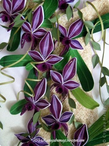 """Мне очень нравятся орхидеи, но, к сожалению, далеко не все виды орхидей могут расти в нашем климате. Я решила сделать себе ещё один подарок, """"вырастив"""" бумажную орхидею.   Небольшая справка: Орхидеи могут расти как в грунте (на земле), так и на деревьях и иногда на скалах. Область распространения орхидей достаточно обширна, но больше всего их встречается именно в жарком, влажном климате, т.е. в тропиках. Дикие тропические орхидеи в основном растут на деревьях (на нижних ветках и стыках веток со стволом дерева).  фото 19"""