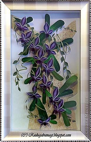 """Мне очень нравятся орхидеи, но, к сожалению, далеко не все виды орхидей могут расти в нашем климате. Я решила сделать себе ещё один подарок, """"вырастив"""" бумажную орхидею.   Небольшая справка: Орхидеи могут расти как в грунте (на земле), так и на деревьях и иногда на скалах. Область распространения орхидей достаточно обширна, но больше всего их встречается именно в жарком, влажном климате, т.е. в тропиках. Дикие тропические орхидеи в основном растут на деревьях (на нижних ветках и стыках веток со стволом дерева).  фото 21"""