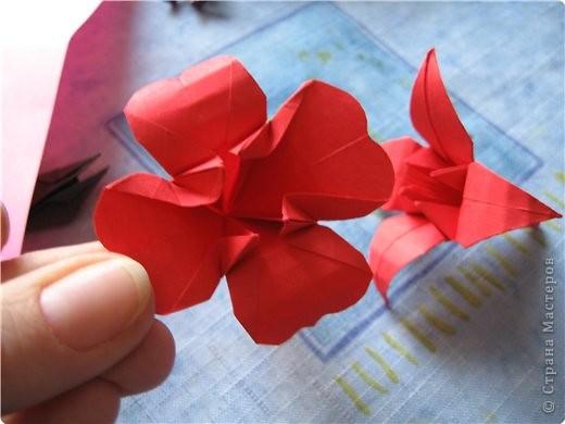"""цветок состоит из 5 элементов. один модуль """"лилия"""" зеленого цвета, бумага размером 10см.  два модуля красного или розового цвета(приближенного к цвету маковых лепестков) размер 9см.  и, серединка. состоит из двух модулей сделанных как модуль""""супер шар"""". один черного цвета (6см) и желтого цвета (5см). для сердцевинки, делаем модули  как для """"супер шара"""", только в укороченном варианте - не разворачивая модуль внутрь. фото 18"""