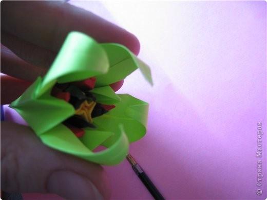 """цветок состоит из 5 элементов. один модуль """"лилия"""" зеленого цвета, бумага размером 10см.  два модуля красного или розового цвета(приближенного к цвету маковых лепестков) размер 9см.  и, серединка. состоит из двух модулей сделанных как модуль""""супер шар"""". один черного цвета (6см) и желтого цвета (5см). для сердцевинки, делаем модули  как для """"супер шара"""", только в укороченном варианте - не разворачивая модуль внутрь. фото 20"""