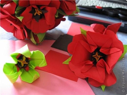 """цветок состоит из 5 элементов. один модуль """"лилия"""" зеленого цвета, бумага размером 10см.  два модуля красного или розового цвета(приближенного к цвету маковых лепестков) размер 9см.  и, серединка. состоит из двух модулей сделанных как модуль""""супер шар"""". один черного цвета (6см) и желтого цвета (5см). для сердцевинки, делаем модули  как для """"супер шара"""", только в укороченном варианте - не разворачивая модуль внутрь. фото 21"""