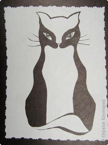Коты и кошки 3 фото 2
