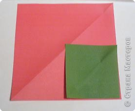 Такими  розами можно украсить открытку или плакат к празднику. фото 2