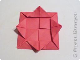 Мастер-класс 8 марта День матери День рождения День учителя Оригами Простая роза оригами Бумага фото 7