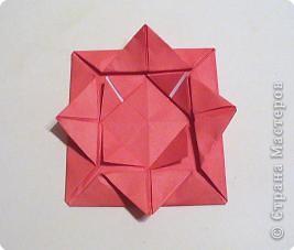 Мастер-класс 8 марта День матери День рождения День учителя Оригами Простая роза оригами Бумага фото 8