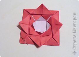 Мастер-класс 8 марта День матери День рождения День учителя Оригами Простая роза оригами Бумага фото 9