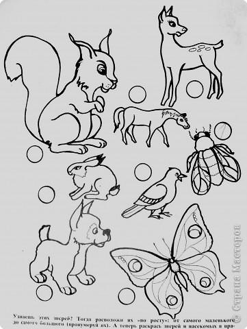 Пока ребенок маленький он живет в мире сказок, где комары и мухи, медведи и лягушки мирно живут в одном теремке. Художники рисуют животных , иногда специально не соблюдая истинных размеров животных. Дети рисуют на стандартном листе, лепят из комочка глины, который умещается в кулачке. Вот и случается, что гриб и елочка могут быть одной высоты.   фото 13