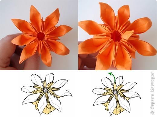 "готовый модуль-цветок для кусудамы ""Marguerite"", автор схемы - Mio Tsugawa фото 19"