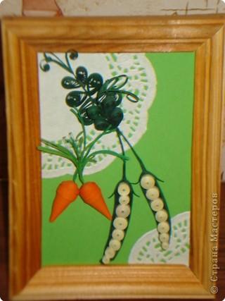 Морковка с горошком фото 1