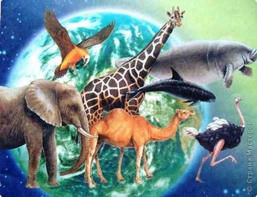 Пока ребенок маленький он живет в мире сказок, где комары и мухи, медведи и лягушки мирно живут в одном теремке. Художники рисуют животных , иногда специально не соблюдая истинных размеров животных. Дети рисуют на стандартном листе, лепят из комочка глины, который умещается в кулачке. Вот и случается, что гриб и елочка могут быть одной высоты.   фото 12
