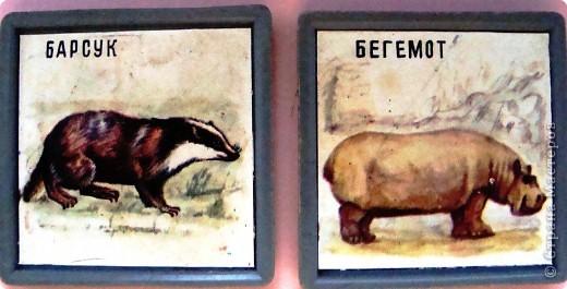 Пока ребенок маленький он живет в мире сказок, где комары и мухи, медведи и лягушки мирно живут в одном теремке. Художники рисуют животных , иногда специально не соблюдая истинных размеров животных. Дети рисуют на стандартном листе, лепят из комочка глины, который умещается в кулачке. Вот и случается, что гриб и елочка могут быть одной высоты.   фото 5