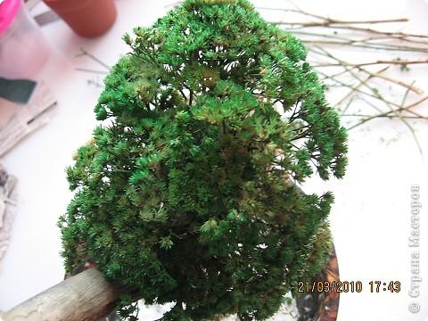 Вот такое дерево у меня получилось фото 12