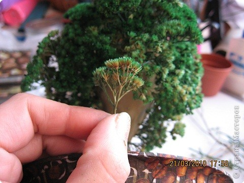 Вот такое дерево у меня получилось фото 13