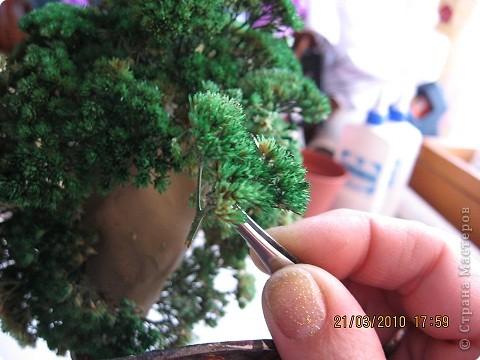 Вот такое дерево у меня получилось фото 14