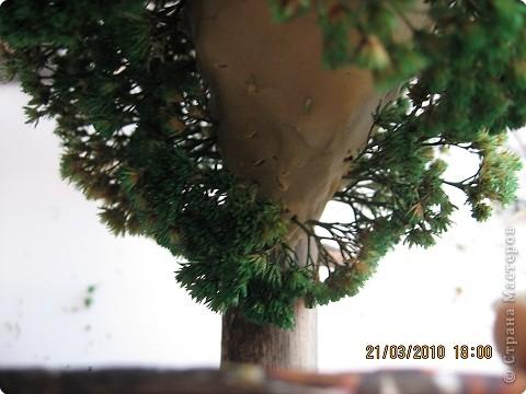 Вот такое дерево у меня получилось фото 15