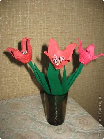 Тюльпанчики фото 1