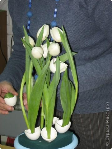В нашем учреждении работает замечательный флорист. Ежегодно у нас проходят мастер-классы по флористике. В этом году мы выполняли композицию к Пасхе. Посмотрите работы, они все разные, хотя сделаны из одинаковых материалов: тюльпаны, яичная скорлупа, перья, бергасс, мох. И родилось чудо, которое радует нас и удивляет других. Спасибо, нашему педагогу.  Земля и солнце, Поля и лес - Все славят Бога: Христос Воскрес!     В улыбке синих Живых небес Всё та же радость: Христос Воскрес!  Вражда исчезла, И страх исчез. Нет больше злобы - Христос Воскрес!  Как дивны звуки Святых словес, В которых слышно: Христос Воскрес!  Земля и солнце, Поля и лес - Все славят Бога: Христос Воскрес!  (Л. Чарская)   фото 5